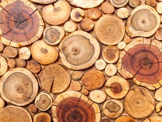 چسب چوب برنا